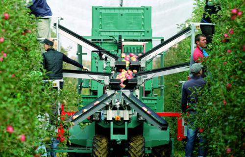 Новинка в отрасли садоводства: машины для сбора фруктов Technofruit теперь в Украине!