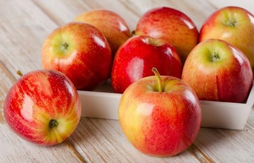 Как сортируют и хранят яблоки в Европе? Опыт польских садоводов