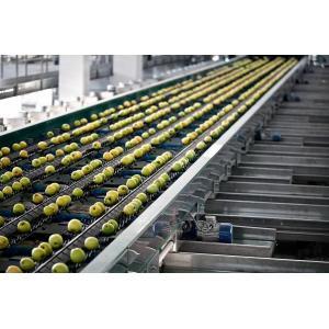 Лінія сортування овочів і фруктів Pomone 4