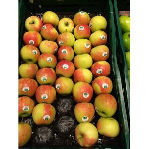 Вкладиш (осередок) в ящик 60х40 см для круглих фруктів в асс