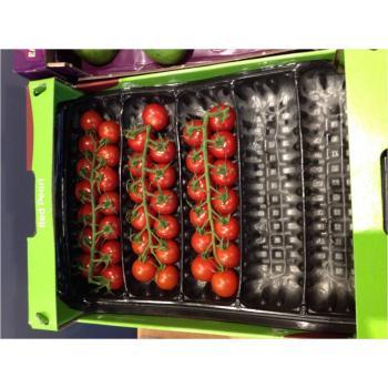 Вкладиш в ящик 50х30 для помідорів черрі