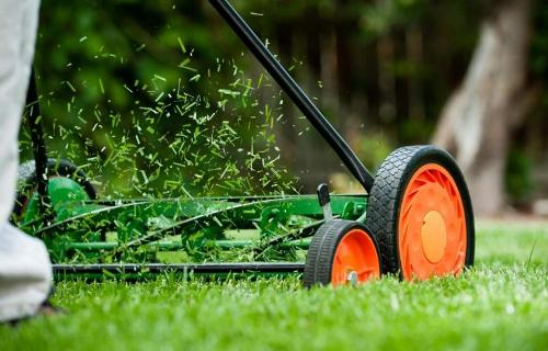 Мульчирующая газонокосилка: что это и для чего нужна